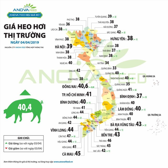Có thể thiếu nguồn cung khi gần 100.000 con lợn bị tiêu hủy vì dịch - Ảnh 2.
