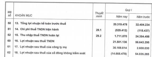 Hoàng Anh Gia Lai (HAG): Doanh thu quý 1 đạt 410 tỷ đồng, hoàn thành 8% kế hoạch năm - Ảnh 2.