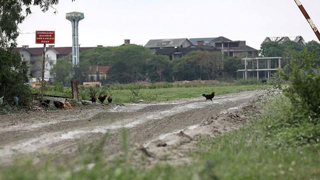 Rác thùng phuy nghi chất thải công nghiệp đổ bậy bên Đại lộ Thăng Long - Ảnh 11.