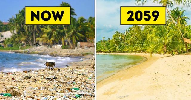 Theo nghiên cứu, loài giun ăn rác thải nhựa này có thể là vị cứu tinh cho trái đất trong tương lai - Ảnh 5.