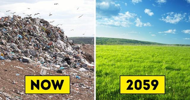 Theo nghiên cứu, loài giun ăn rác thải nhựa này có thể là vị cứu tinh cho trái đất trong tương lai - Ảnh 1.