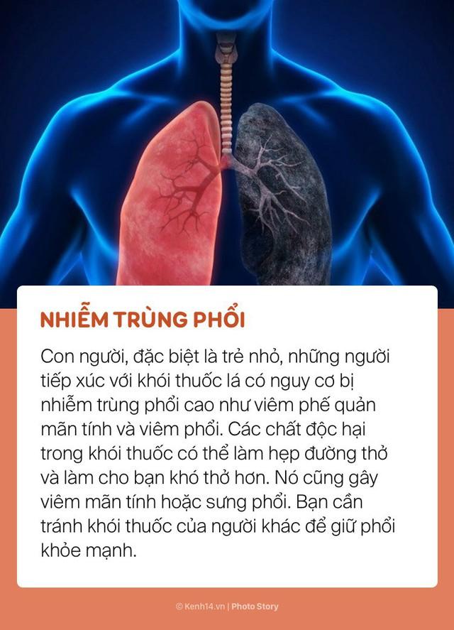 Khói thuốc lá và những tác hại nghiêm trọng đến sức khoẻ của những người xung quanh - Ảnh 1.