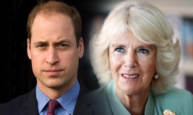 Hoàng tử William đến tận bây giờ vẫn không chấp nhận mẹ kế Camilla, nguyên nhân từ một cuộc gặp bí mật sau khi Công nương Diana qua đời - Ảnh 2.