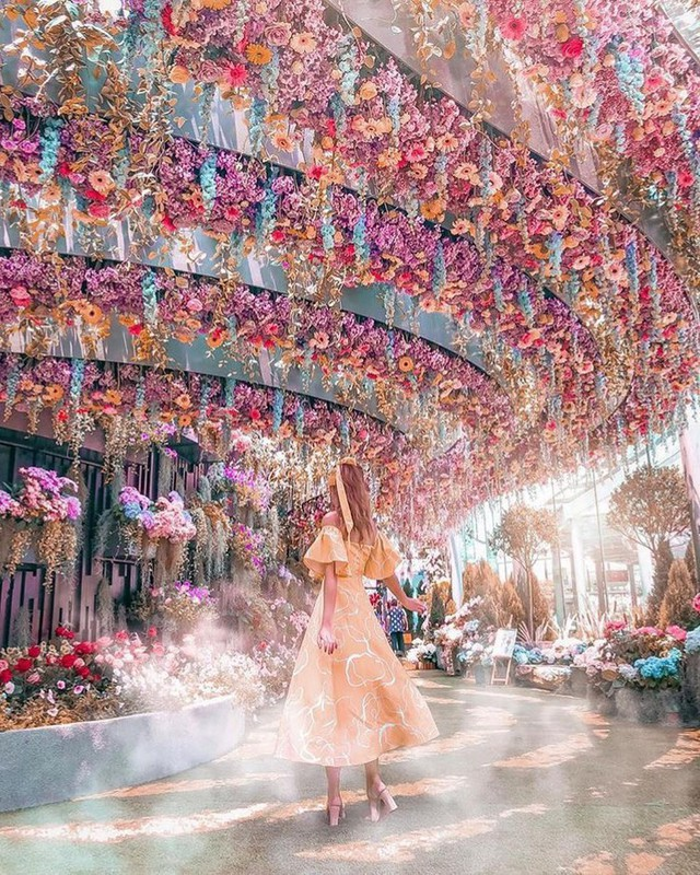 """Sau Jewel Changi, Singapore lại có thêm """"kỳ quan"""" vườn hoa treo khổng lồ khiến dân tình phải ngước lên """"mỏi cả cổ"""" để ngắm nhìn - Ảnh 3."""