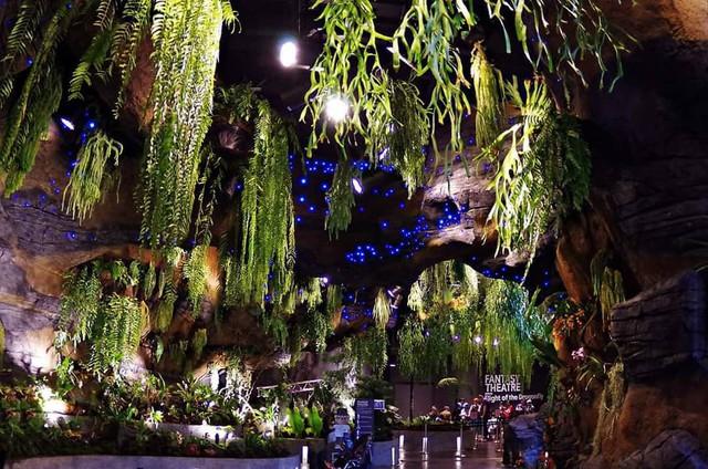 """Sau Jewel Changi, Singapore lại có thêm """"kỳ quan"""" vườn hoa treo khổng lồ khiến dân tình phải ngước lên """"mỏi cả cổ"""" để ngắm nhìn - Ảnh 18."""