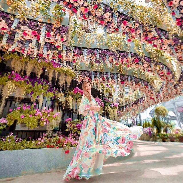 """Sau Jewel Changi, Singapore lại có thêm """"kỳ quan"""" vườn hoa treo khổng lồ khiến dân tình phải ngước lên """"mỏi cả cổ"""" để ngắm nhìn - Ảnh 27."""