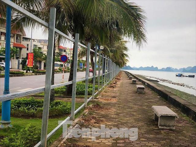 Đường ngắm vịnh đẹp nhất Hạ Long bất ngờ bị tôn che kín - Ảnh 7.