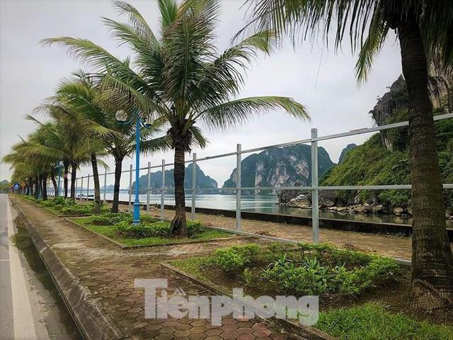 Đường ngắm vịnh đẹp nhất Hạ Long bất ngờ bị tôn che kín - Ảnh 10.