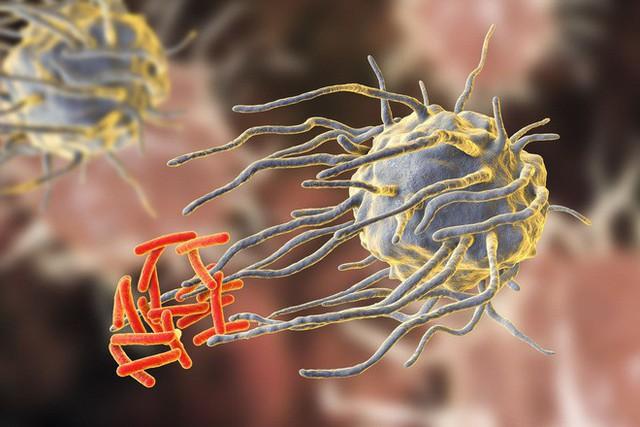 Lời cảnh báo toàn nhân loại của Liên Hợp Quốc: Tất cả thuốc kháng sinh đang trở nên vô dụng - Ảnh 1.
