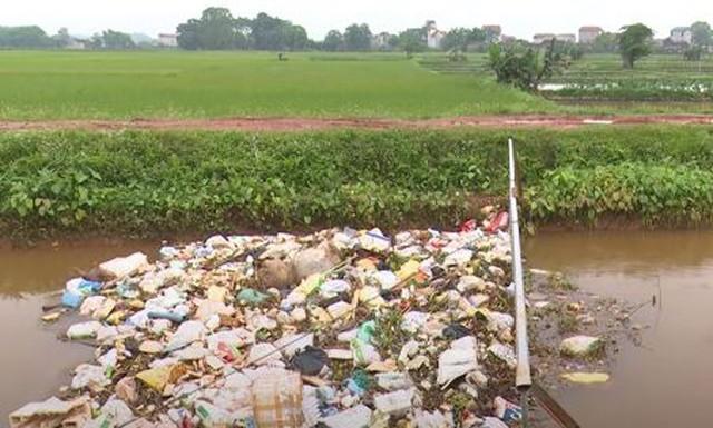 Bắc Giang: Lợn chết đầy sông tại... thượng nguồn - Ảnh 2.