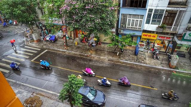 Hà Nội đón cơn mưa vàng sau chuỗi ngày nắng như đổ lửa - Ảnh 1.
