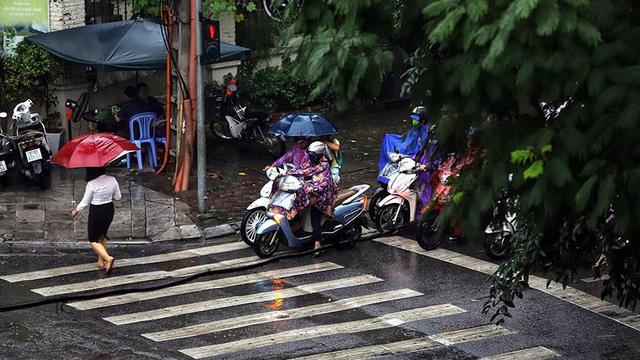 Hà Nội đón cơn mưa vàng sau chuỗi ngày nắng như đổ lửa - Ảnh 6.