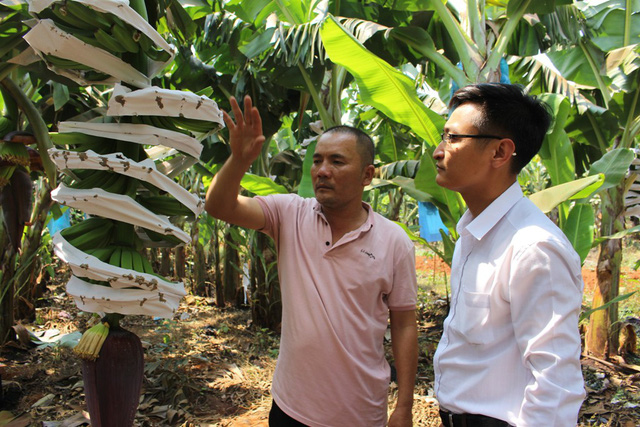 Thay đổi chiến lược, tập trung vào nông nghiệp công nghệ cao, DRI mở ra cơ hội phát triển mới - Ảnh 2.