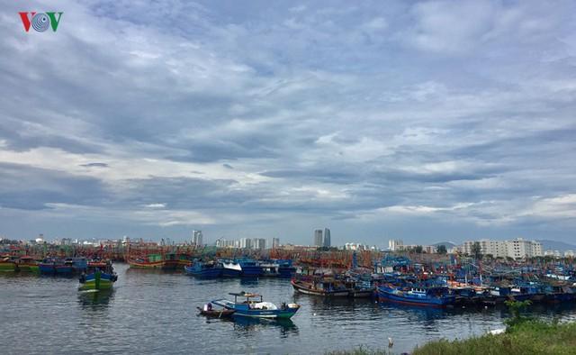 Giá xăng dầu liên tục tăng, nhiều tàu cá nằm bờ - Ảnh 2.