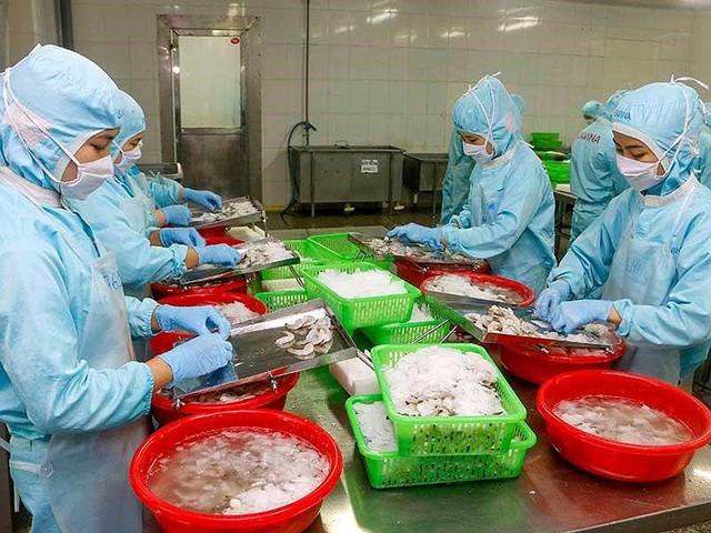 Tiền Trung Quốc giảm giá, thủy sản Việt Nam chao đảo - Ảnh 1.