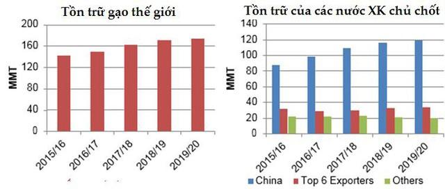 Dự báo toàn cảnh thị trường lúa gạo thế giới năm 2019/2020 - Ảnh 4.