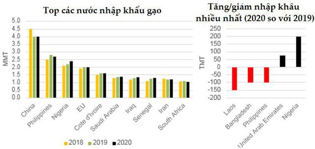 Dự báo toàn cảnh thị trường lúa gạo thế giới năm 2019/2020 - Ảnh 6.