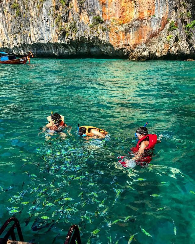 Vịnh biển nổi tiếng tại đảo Koh Phi Phi - Thái Lan cấm khách trong 2 năm tới để phục hồi hệ sinh thái - Ảnh 4.