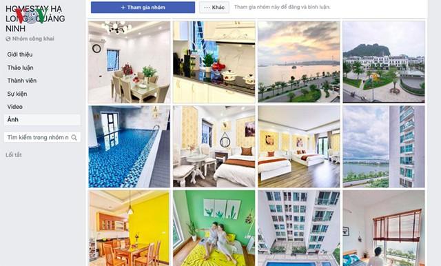 """Nở rộ căn hộ chung cư """"biến hóa"""" thành khách sạn ở Hạ Long - Ảnh 2."""