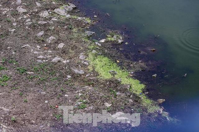 Công viên 300 tỷ cạn nước, ô nhiễm những ngày nắng gắt - Ảnh 11.