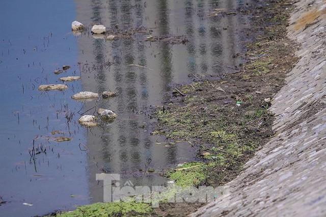 Công viên 300 tỷ cạn nước, ô nhiễm những ngày nắng gắt - Ảnh 4.