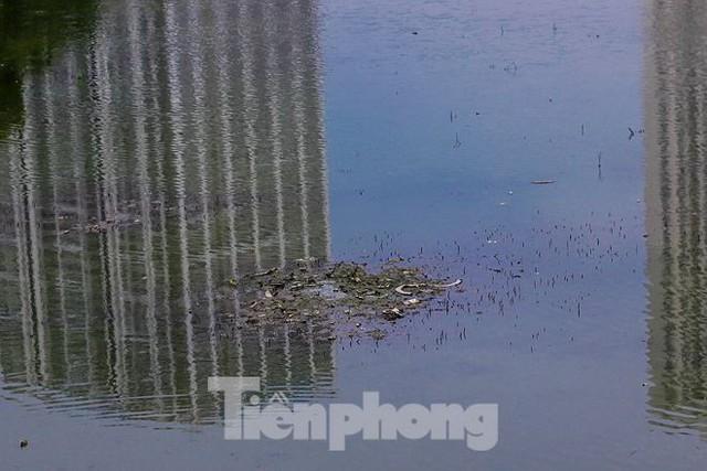 Công viên 300 tỷ cạn nước, ô nhiễm những ngày nắng gắt - Ảnh 6.