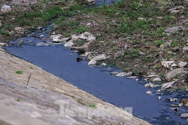 Công viên 300 tỷ cạn nước, ô nhiễm những ngày nắng gắt - Ảnh 8.