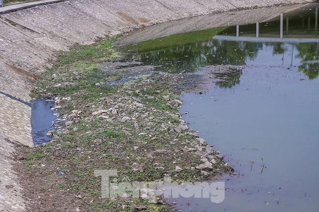 Công viên 300 tỷ cạn nước, ô nhiễm những ngày nắng gắt - Ảnh 10.