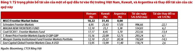 Điểm mặt các quỹ benchmark MSCI Frontier Index có thể tăng tỷ trọng cổ phiếu Việt Nam trong thời gian tới - Ảnh 1.