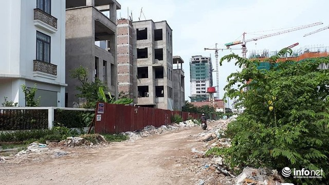 Biệt thự tiền tỷ hoang phế, không người ở giữa Thủ đô - Ảnh 7.