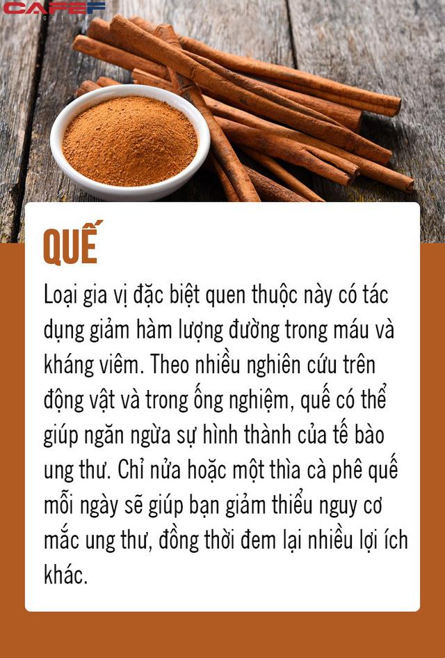 Chặn đứng ung thư từ 8 loại thực phẩm gia đình nào cũng có trong bếp: Số 5 là gia vị quen thuộc của người Việt! - Ảnh 6.