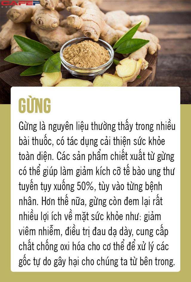 Chặn đứng ung thư từ 8 loại thực phẩm gia đình nào cũng có trong bếp: Số 5 là gia vị quen thuộc của người Việt! - Ảnh 7.