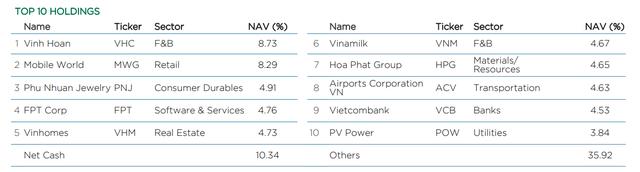 Các quỹ ngoại lớn nhất thị trường đang thua VN-Index - Ảnh 3.