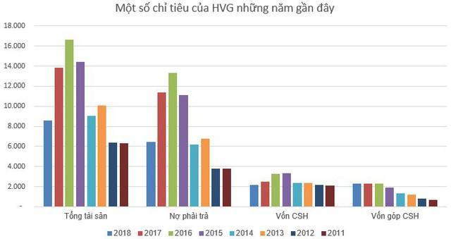 Thủy sản Hùng Vương (HVG) tiếp tục muốn bán vốn tại các công ty con - Ảnh 1.