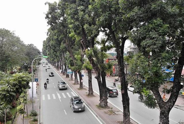 Ảnh: Đường Láng thay đổi bất ngờ, dân Thủ đô cứ ngỡ đang lạc vào đường phố Singapore - Ảnh 1.
