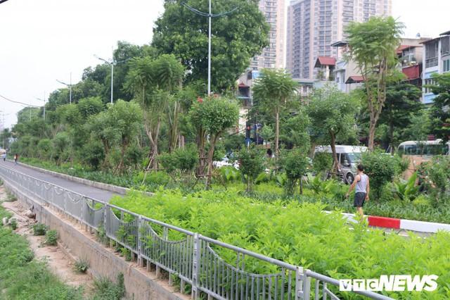 Ảnh: Đường Láng thay đổi bất ngờ, dân Thủ đô cứ ngỡ đang lạc vào đường phố Singapore - Ảnh 3.