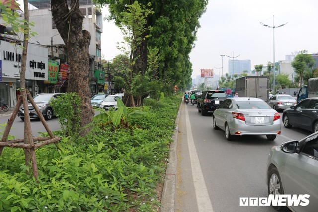 Ảnh: Đường Láng thay đổi bất ngờ, dân Thủ đô cứ ngỡ đang lạc vào đường phố Singapore - Ảnh 4.