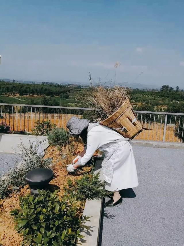 Nữ giám đốc doanh nghiệp quyết định sống cho bản thân sau 40 tuổi bằng cách nghỉ việc về quê trồng hoa - Ảnh 8.