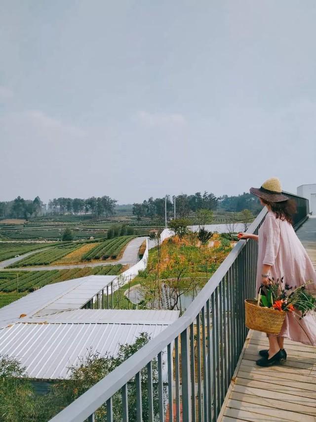 Nữ giám đốc doanh nghiệp quyết định sống cho bản thân sau 40 tuổi bằng cách nghỉ việc về quê trồng hoa - Ảnh 10.
