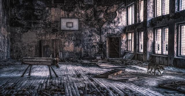 Từ vùng đất ma không ai dám bén mảng, nhà máy điện hạt nhân Chernobyl bỗng hóa xứ sở thần tiên đẹp lịm tim qua lăng kính của nhiếp ảnh gia - Ảnh 31.