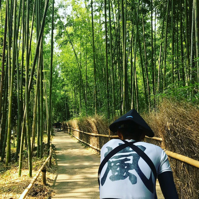 Lạc lối giữa mê cung xanh mướt của rừng tre Sagano: Nơi chứa đựng những âm thanh tinh túy cả Nhật Bản đều muốn bảo tồn - Ảnh 13.