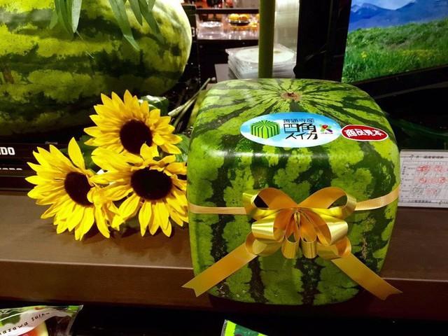 Những loại trái cây giá trên trời, gấp cả trăm lần quả vải thiều Shintomi 240.000 đồng/quả, có loại cả trăm triệu đồng - Ảnh 1.