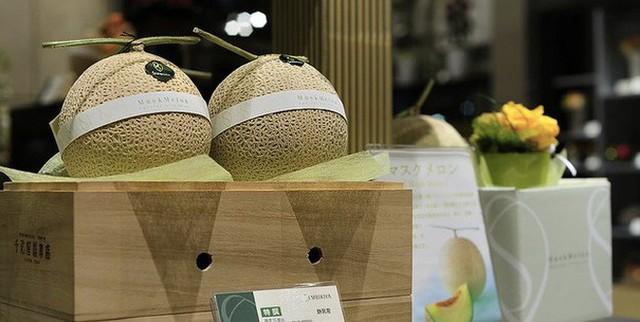 Những loại trái cây giá trên trời, gấp cả trăm lần quả vải thiều Shintomi 240.000 đồng/quả, có loại cả trăm triệu đồng - Ảnh 14.