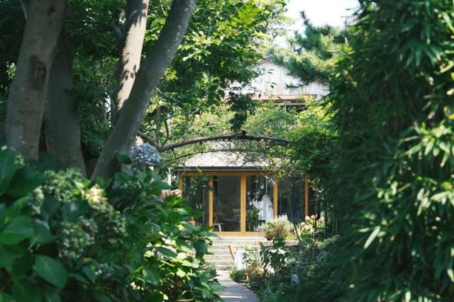Cuộc sống hạnh phúc và bình yên của cặp vợ chồng người Nhật ở ngôi nhà nhỏ trên núi suốt 40 năm - Ảnh 15.