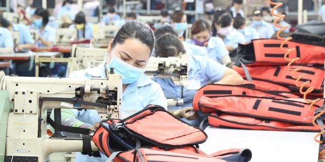 Đón ngày đặc biệt, gần 100% hàng Việt sang EU được xóa bỏ thuế - Ảnh 1.