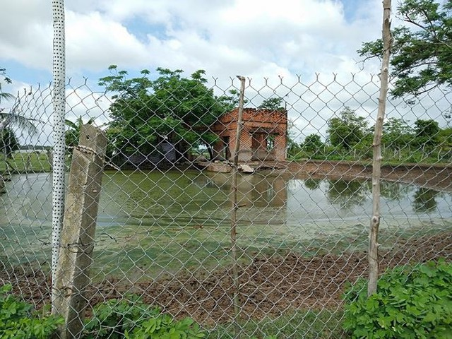 Bên trong dự án Công viên Sài Gòn Safari vừa có kết luận thanh tra - Ảnh 3.