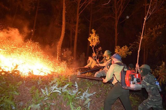 Toàn cảnh vụ cháy rừng thông lớn nhất Hà Tĩnh, di dời tài sản cả trăm hộ dân - Ảnh 15.