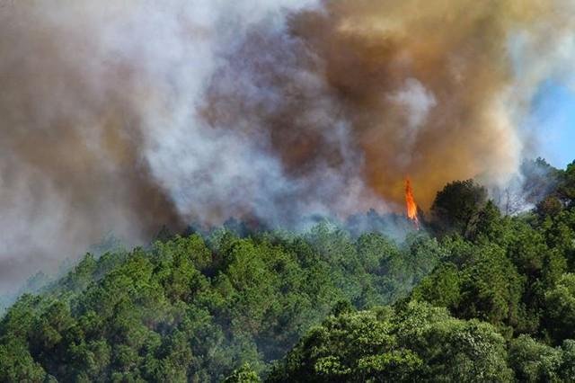 Cháy rừng ở Hà Tĩnh: Biển lửa lan rộng, uy hiếp đường dây 500KV - Ảnh 4.