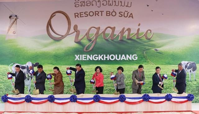 """Xây tổ hợp """"Resort"""" bò sữa Organic 5.000 ha tại Lào: Vinamilk giữ đúng cam kết sẽ chinh phục thì trường cao cấp quốc tế - Ảnh 1."""