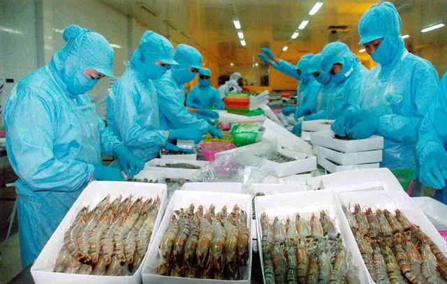 Trung Quốc tăng nuôi tôm, Việt Nam vẫn có cơ hội xuất khẩu lớn - Ảnh 1.